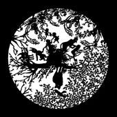 Графический картридж «Темные силы»